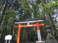 日本で一番長い直線参道